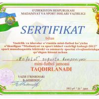 Сертификат по мини -футболу